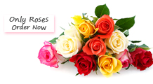 Roses Delivery Philippines