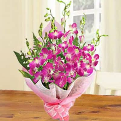 Sonia Orchids